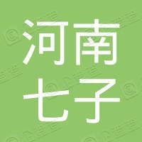 河南七子机电设备有限公司