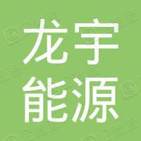 河南龙宇能源股份有限公司