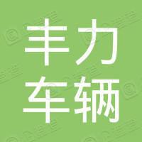 南通丰力车辆检测有限公司