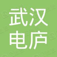 武汉电庐实验电炉厂