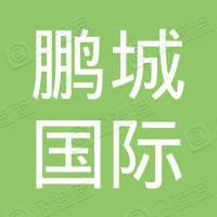 鹏城国际传媒股份有限公司