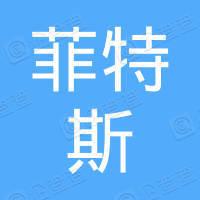 武汉菲特斯汽车零部件有限公司