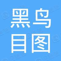 武汉黑鸟目图制图有限公司