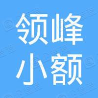 陕县领峰小额贷款有限公司