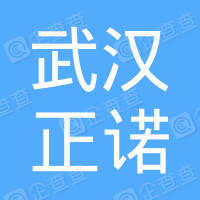 武汉正诺房地产营销策划有限公司