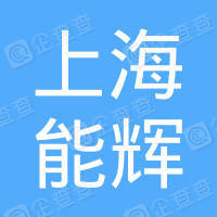 上海能辉投资控股有限公司