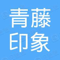 青藤印象(深圳)实业有限公司