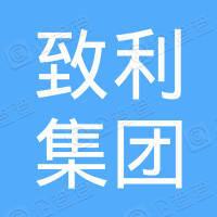 广州致利集团有限公司