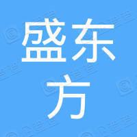 武汉盛东方投资有限公司