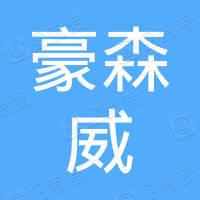 广州市豪森威航空咨询有限公司