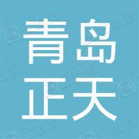 青岛正天环境设备有限公司