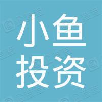 深圳市小鱼投资有限公司