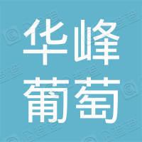 江阴市华峰葡萄专业合作社
