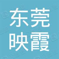 东莞市映霞网络工程有限公司