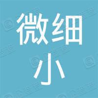 广州微细小信息科技有限公司