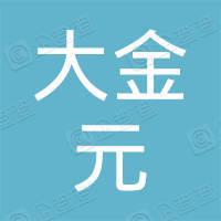 深圳市大金元科技有限公司