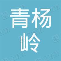 山阴县偏岭乡青杨岭煤矿
