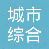 深圳市深汕特别合作区城市综合服务有限公司