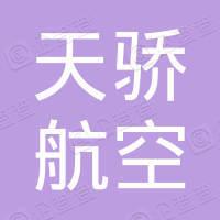 重庆天骄航空动力有限公司