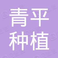 盐源县青平种植养殖专业合作社