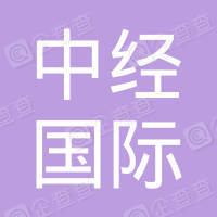 中经国际控股集团有限公司