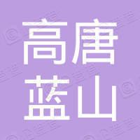 山东省高唐蓝山集团总公司