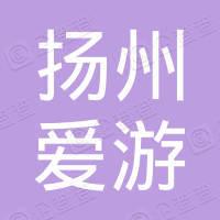 扬州爱游网络科技有限公司