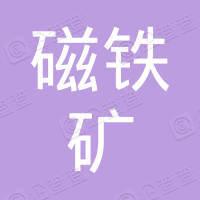 洋县钒钛磁铁矿有限责任公司