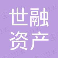深圳世融资产管理有限公司