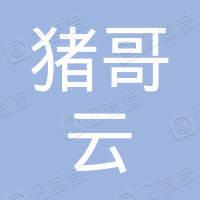 猪哥云(北京)网络科技有限公司