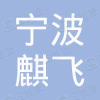 宁波麒飞网安科技有限公司
