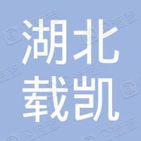 湖北载凯文化传媒有限公司