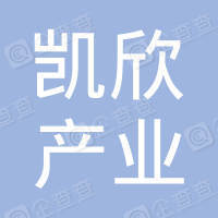 贵州凯欣产业投资股份有限公司