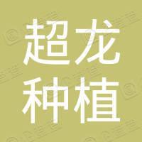 崇陽縣超龍種植專業合作社