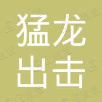 广东猛龙出击文化传媒有限公司