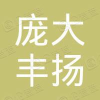 太原庞大丰扬丰田汽车销售服务有限公司