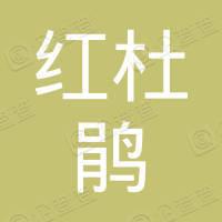 大方县红杜鹃酒楼