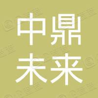 北京中鼎未来新能源科技有限公司