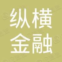 深圳市纵横金融服务有限公司