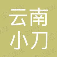 云南小刀新能源科技有限公司
