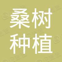 双辽市红旗街桑树种植专业合作社