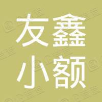 东源县友鑫小额贷款有限公司