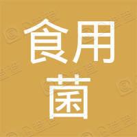 中国食用菌技术开发有限公司