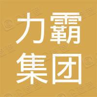 河南力霸集团汝州恒通机动车驾驶员培训有限公司