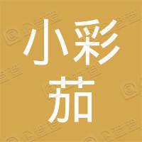 深圳市小彩茄信息科技有限公司