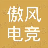 杭州傲风电竞科技有限公司