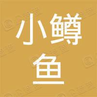 小鳟鱼科技(深圳)有限公司