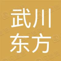 武川县东方新能源发电有限公司