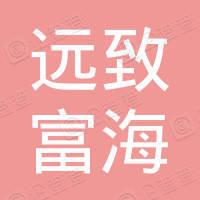 深圳远致富海高新投资企业(有限合伙)