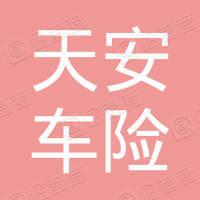 伊川县天安车险代理服务部
